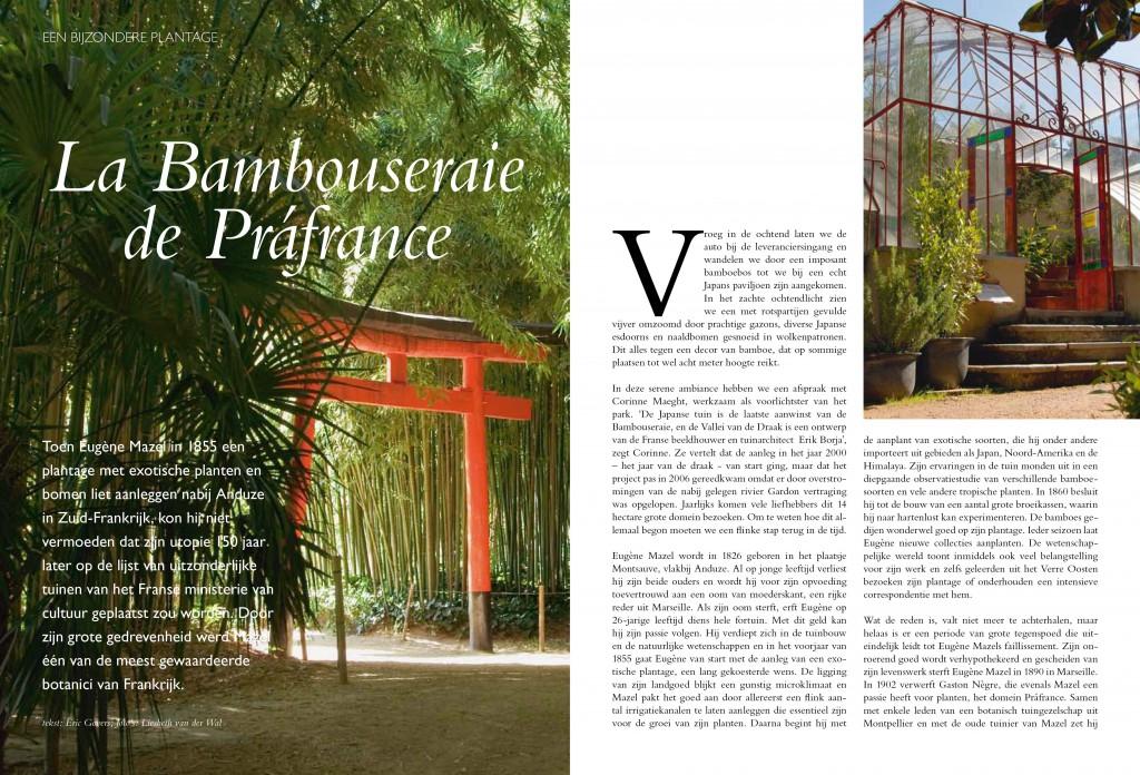 Bambouseraie-1